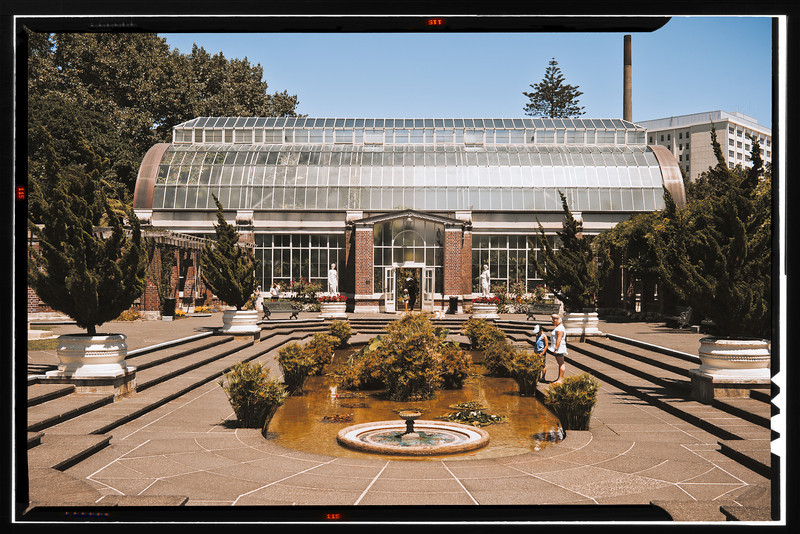 zeiss 35mm f2 auckland domain wintergardens david st george documentary photography image