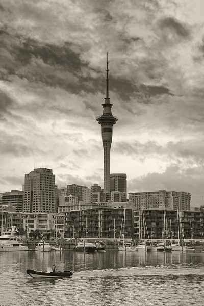 auckland skytower photography image david st george black and white viaduct harbour landscape documentary