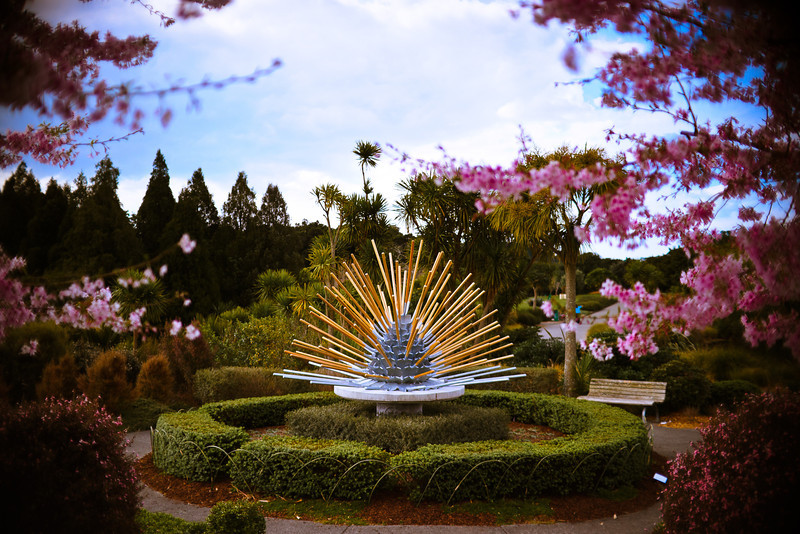 auckland regional botanical gardens sculpture david st george photography