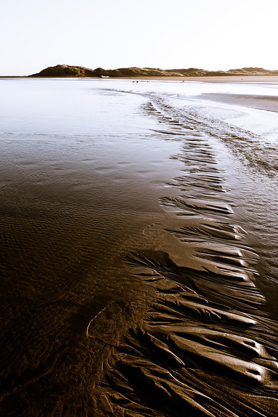 whatipu landscape seascape beachscape auckland new zealand scenery david st george photography nikon